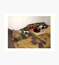 Pepi, Sheba, Alina, Sinbad and Patrick at Home Art Print