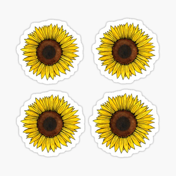 Sunflower sticker sheet Sticker