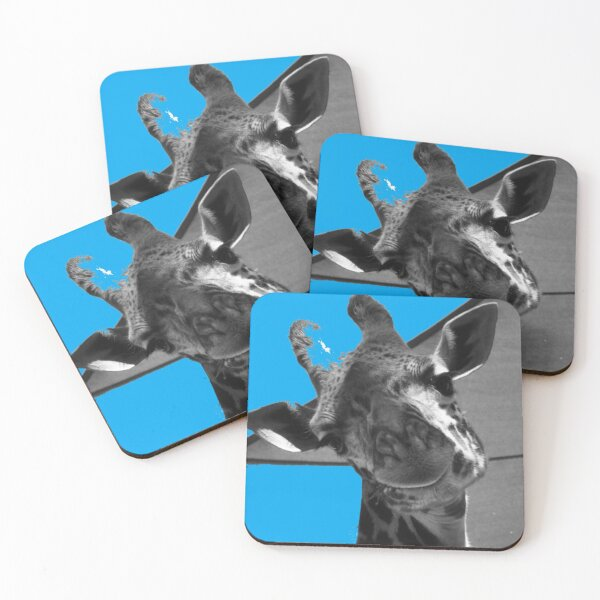 Stay Happy Coasters (Set of 4)