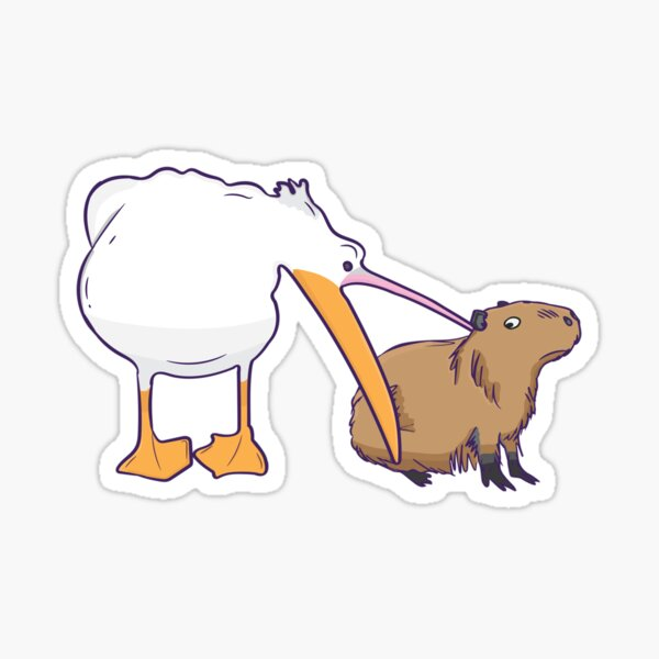 Pelican Tries to Eat Capybara Funny Cute Meme Sticker