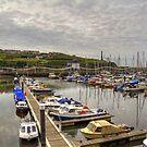 Whitehaven Marina by Tom Gomez
