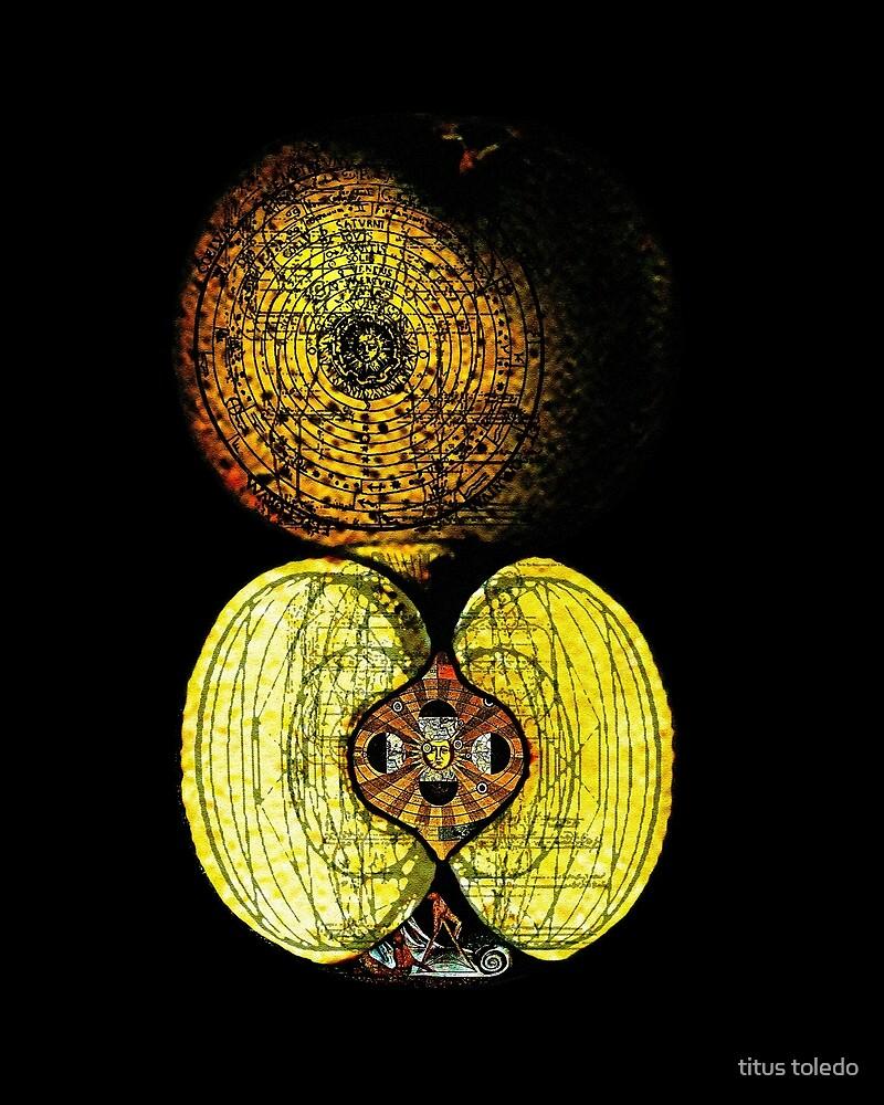 newton's infinite fruit of cosmic indolence by titus toledo