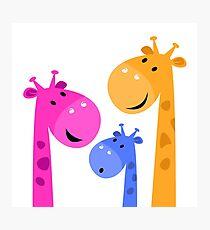 Group of giraffes collective. Vector cartoon Illustration Photographic Print