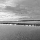 Weston-super-Mare black and white  by Avril Harris