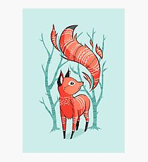 Winter Fox Photographic Print
