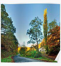 Route de la Lemmetrie Poster