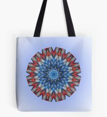 VFW Post 4248_Old Glory on outside wall Tote Bag