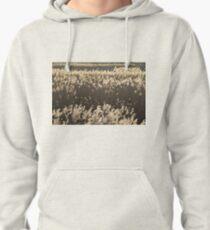 Norfolk Reeds Pullover Hoodie