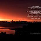 John 12:44-46 by Dawn Silva Hunter