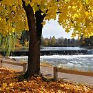 Downtown Bend - Deschutes Dam by Marita Sutherlin