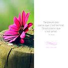 « Souris - Citation d'amour » par beauxproverbes