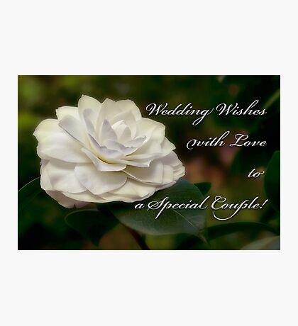 Camellia wedding card Photographic Print