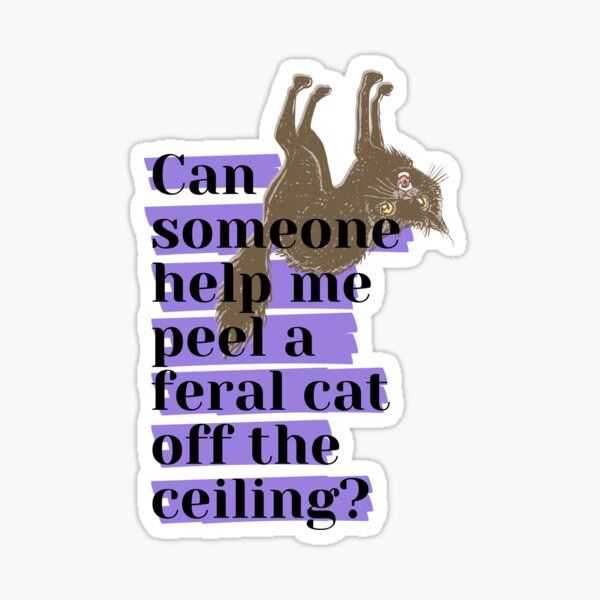 Can someone help me peel a feral cat off the ceiling? Glossy Sticker
