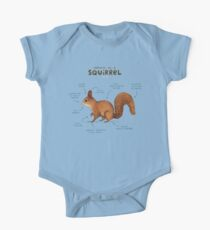Anatomy of a Squirrel Kids Clothes