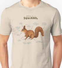 Anatomie d'un écureuil T-shirt unisexe