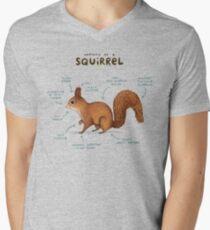 Anatomy of a Squirrel Men's V-Neck T-Shirt
