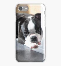 Sleepy Boston Terrier puppy iPhone Case/Skin