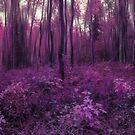 Purple forest by Priska Wettstein