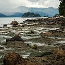 Beach at Skidigate Inlet by Yukondick