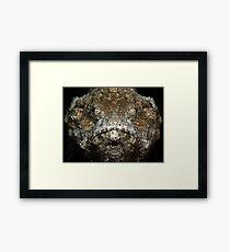 Scorpionfish Portrait Framed Print