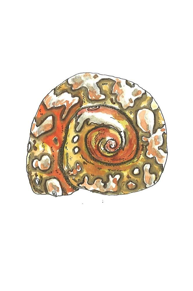 «Caracola Leopardo» de laramaktub