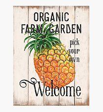Farm Garden 1 Photographic Print