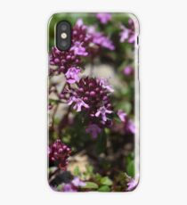 Mother of thyme flowers (Thymus praecox) iPhone Case/Skin