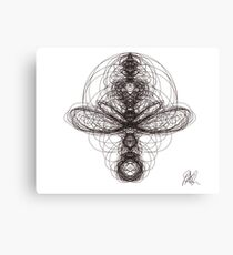 insect? Canvas Print