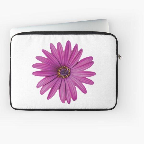 Purple African Daisy Petal Flower Laptop Sleeve