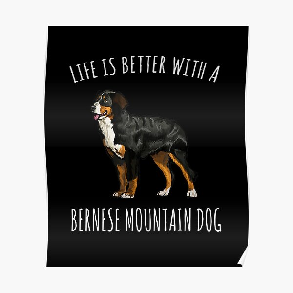 Life Is Better With A Bernese Mountain Dog Lover Poster