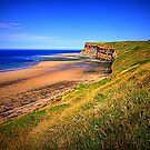 Hunt Cliff and Saltburn Beach, North Yorkshire, England ( 3 Features)  by Ian Alex Blease