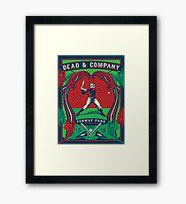 D & CO Summer Tour 2016 Fenway Park Boston MA Framed Print