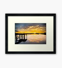 Yellow Flickers  Framed Print