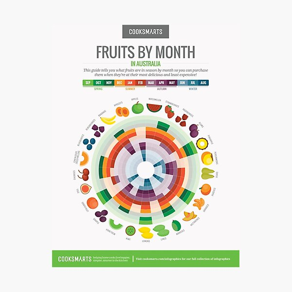 Cook Smarts' Fruits by the Month Guide (Australia) Photographic Print