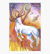 Equine-ox Photographic Print