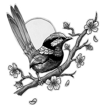 Fairy Wren (Black & White) by AlienEyeArt