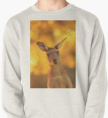 What's Up, Yanchep National Park Pullover