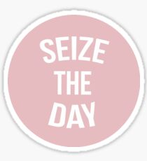 Newsies Seize The Day Pink Sticker