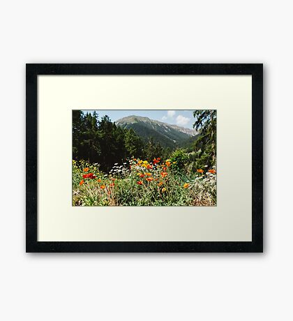 Mountain garden Framed Print