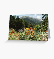 Mountain garden Greeting Card