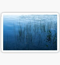 Green and Blue Serenity - Smooth Wetland Morning Sticker
