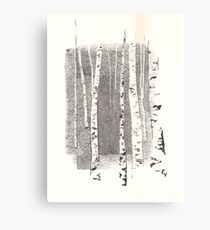 Birch tree bark Canvas Print