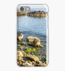 stones and seaweed on rocky coast of the sea iPhone Case/Skin