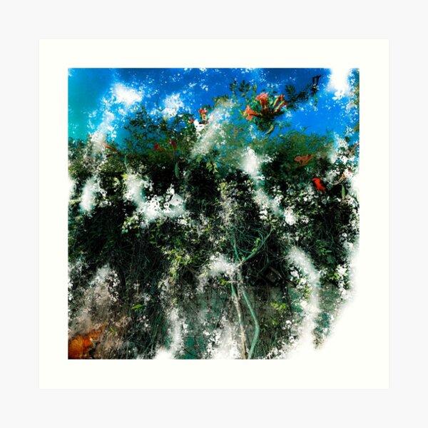Bird. Cat. Flowers. Sky. Art Print