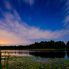 Perseids 3 by Tim Ray