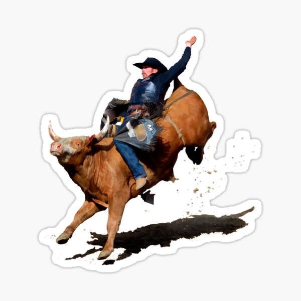 Bull Dust (Rodeo Bull and Cowboy) Sticker