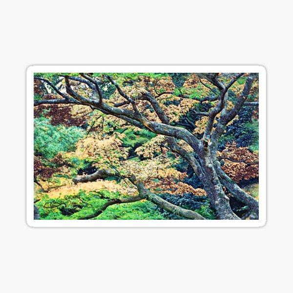 Colorful Forest of Kanagawa Sticker