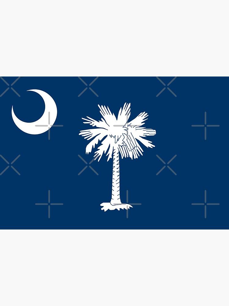 South Carolina Flag by states