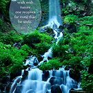Walk with Nature Beautiful Waterfall Green Nature by Beverly Claire Kaiya