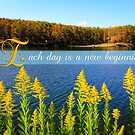Autumn Lake with Canada Goldenrod by Beverly Claire Kaiya